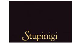 STUPINIGI.png